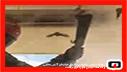 عملیات 125 در پی حضور چند صد خفاش در منزل مسکونی/آتش نشانی رشت