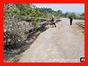 تنها 108 مورد عملیات اطفای آتش سوزی علفزارها در 7 روز گذشته / آتش نشانی رشت