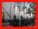آتش زدن ضایعات در شهرک مسکونی حادثه ساز شد/آتش نشانی رشت